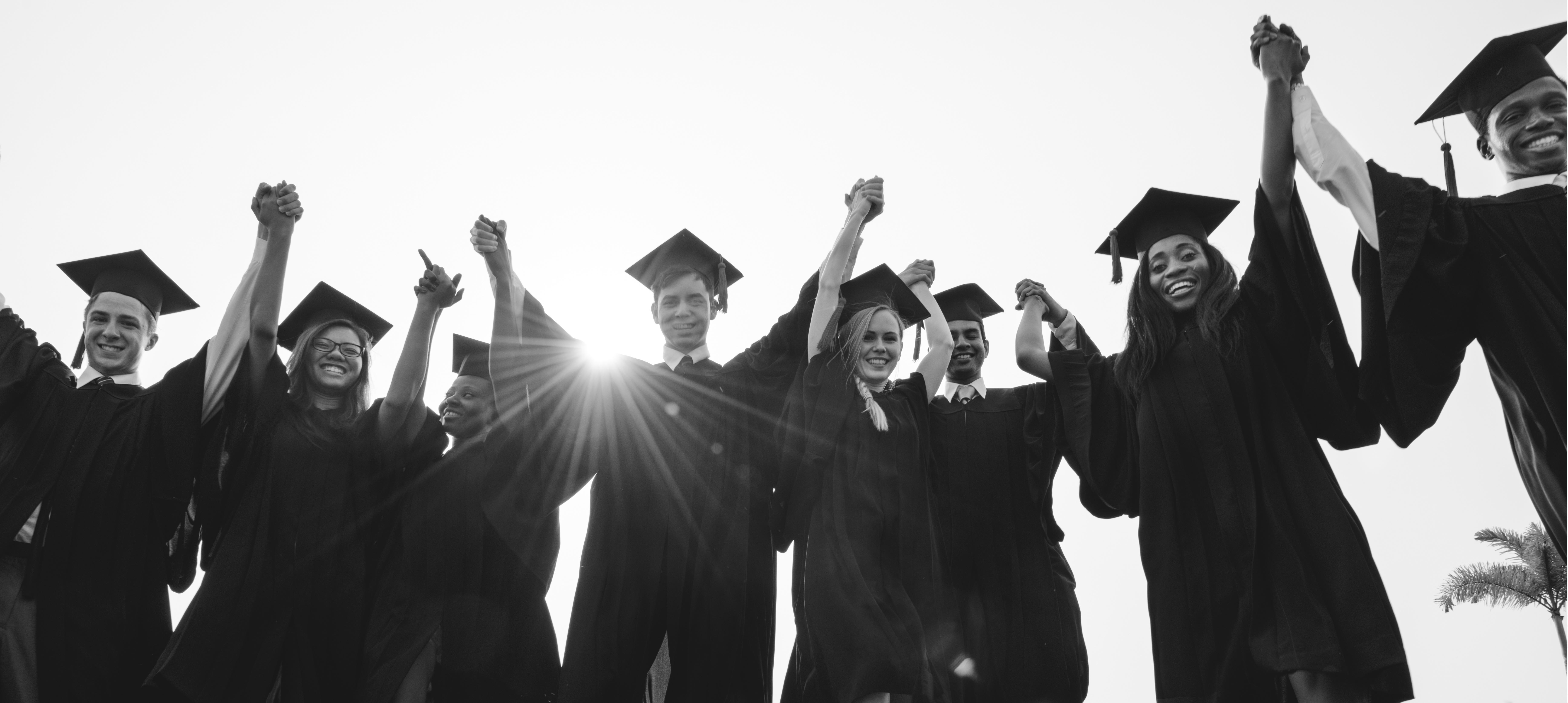 Graduation Achievement Student School College Concept